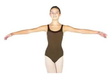 position 2 bras danse classique